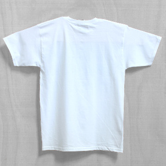 Dakine Wave Stripe White T-Shirt