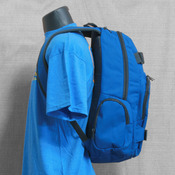 Dakine Atlas 25L Blue Backpack