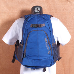 Dakine Pivot 21L Backpack - Blue Stripes